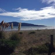 2014-04-06 Paraparaumu Beach (4)