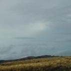 Desert Road © bronwyn angela white