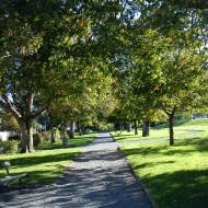 Katherine Mansfield Park, Thorndon 2012