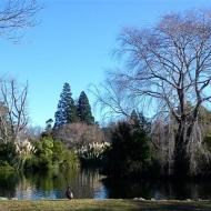 Masterton lake