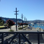 Wellington 2011 © bronwyn angela white