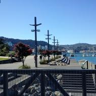 Wellington 2011 © bronwyn angela white