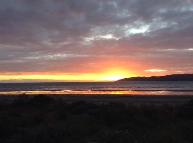 IMAGE © bronwyn angela white, Kapiti / Wellington, NZ