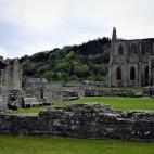 Tintern Abbey, Wye Valley, Wales (21)